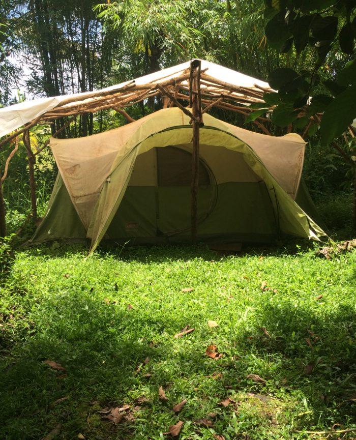 Rainforest Tent Hawaii