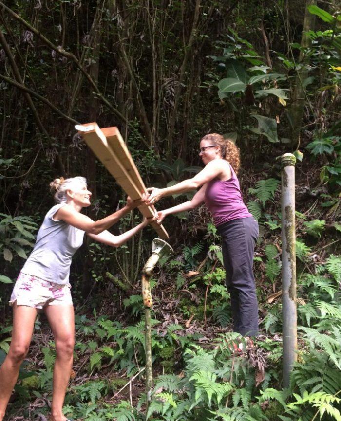 Jungle Queen Volunteers in Hawaii