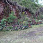 Eco toilet and solar shower original landscape