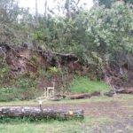 hawaii building landscape garden