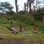 meditation hawaii yoga