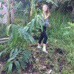 Jungle Intern in Hawaii