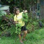 Hedonisia Community Garden Bananas