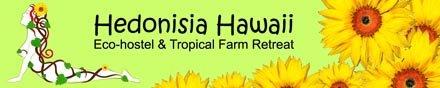 Hedonisia Hawaii Sustainable Community and EcoHostel