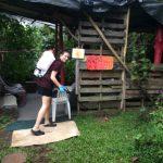 Fire Ant Control in Puna