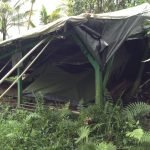 Avocado Tent Damage from Hurricane Iselle.