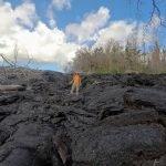 Post-Volcano Hedonisia Lava with Mojo